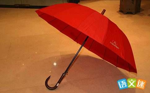 雨伞的造句